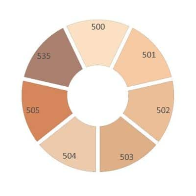 dual matte wear foundation colour wheel